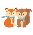 cute fox and squirrel with scarf autumn vector image vector image
