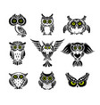 cute owls collection black silhouette for your vector image
