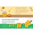 Horizontal banners honey natural production vector image vector image