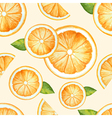 Orange seamless pattern watercolor fruit vector image