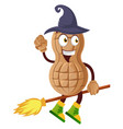 peanut flying on broom on white background vector image