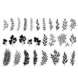 set hand drawn tree branches and leaves vector image vector image
