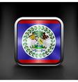 Square icon with flag of belize with reflection vector image vector image