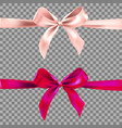 two decorative ribbons vector image vector image