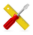 screwdriver and ruler on white background vector image vector image