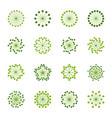 set colorful flowers vector image vector image