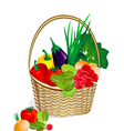 vegetables in the basket vector image vector image