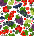 Currant Berries Pattern