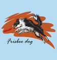decorative border collie playing frisbee vector image vector image
