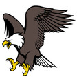 flying eagle mascot vector image vector image