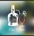 hand sketched rum bottle and pina colada glass vector image vector image