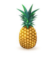 pineapple realistic summer exotic fruit isolated vector image vector image
