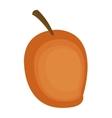 whole ripe mango icon vector image