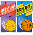 Basketball and volleyball banners isolated on vector image vector image