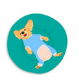 beagle lying on gree cushion in turn over position vector image