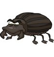 black beetle vector image