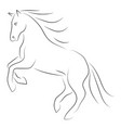 black line horse on hind legs on white background vector image vector image