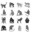 different monkeys icons set monochrome vector image vector image