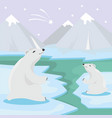international polar bear day poster vector image