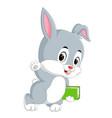 rabbit cartoon holding book vector image