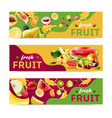 realistic fruits banner set vector image