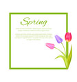 spring poster with text in frame colorful bouquet vector image vector image