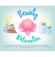 Beauty Salon Facials Beauty Relaxation Aromatherap vector image vector image