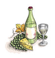 bottle and glass of wine grapes cheese isolate vector image