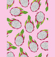 dragon fruit and slice seamless pattern on vector image vector image