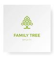family tree life oak banyan leaf logo design vector image