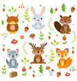 forest animals in cartoon style characters vector image