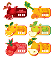 fresh price vector image