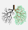 human lungs respiratory system the appearance of vector image