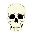 human skull cartoon vector image vector image