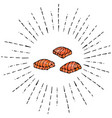 Image steak of red fish salmon in sun rays vector image