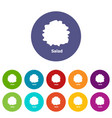 salad icons set color vector image vector image