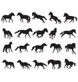 set of isolated horses silhouettes-3 vector image vector image