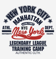 t-shirt stamp graphic new york sport wear vector image vector image