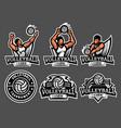 volleyballl logo and badge set image vector image