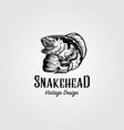 channa snakehead fish vintage logo design vector image vector image