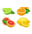 citrus products lime lemon grapefruits and orange vector image