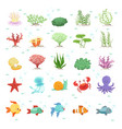 marine animals fishes collection and underwater vector image
