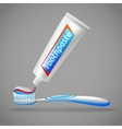 Toothbrush And Toothpaste Design Icons vector image vector image