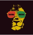 Lion head background Poster vector image