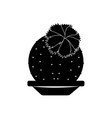 abstract cute cactus vector image vector image