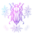 Boho tattoo Color Scarab beetle May bug in hipster vector image