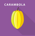 carambola icon flat style vector image vector image