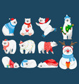 christmas polar bears arctic bear with new year vector image