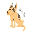 great dane isolated large breed domestic dog vector image vector image