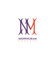 luxury monogram nm vector image